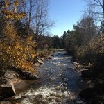 Streamside on Fall River Foto