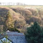 Foto Exmoor Forest Inn
