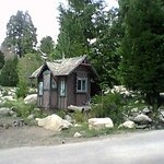 Photo de Arrowhead Pine Rose Cabins