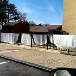Drying sheets on the fence