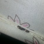 "Bed Bugs !!!! Unwanted ""pets"" in the room"