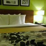Foto de Sleep Inn Jamaica