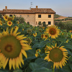 Photo of Agriturismo CA