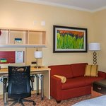 Towneplace Suites Bowling Green Foto