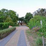 Foto de Lovane Boutique Wine Estate and Guest House