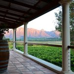 Foto van Lovane Boutique Wine Estate and Guest House