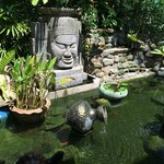 Pond by dining area