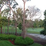 Foto de Innisbrook, A Salamander Golf & Spa Resort