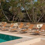 Courtyard Miami Coconut Grove Foto