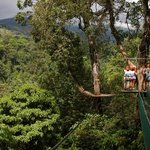 A taste of the epic scenery that you get to take in from our treetop platforms