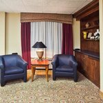Bild från Holiday Inn Express Hotel & Suites Cedartown