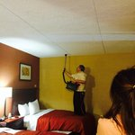 Foto van Country Inn & Suites By Carlson Nashville Airport