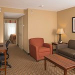 Photo de BEST WESTERN PLUS Lake Lanier/Gainesville Hotel & Suites