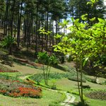 One of the many flower parks in Dalat.