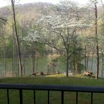 Φωτογραφία: Jenny Wiley State Resort