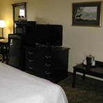 Frankfort Hampton Inn -- King Room
