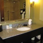 Frankfort Hampton Inn -- Bath
