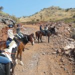 with 6 horses in Aravalli Mountains, Rajasthan