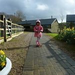 Zdjęcie Nettlecombe Farm Holiday Cottages