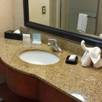 Hampton Inn & Suites Las Cruces I-25 resmi