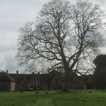 Photo of Abbots Grange - April 2014
