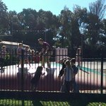 Foto de BIG4 Inverloch Holiday Park