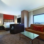 Hyatt Dulles At Dulles International Airport Herndon