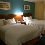 Foto de Fairfield Inn & Suites Des Moines West