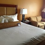 BEST WESTERN PLUS Richmond Inn & Suites-Baton Rouge resmi