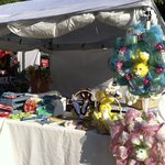 Our booth at the Dogwood Festival