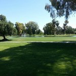 Photo de Orange Tree Golf Resort