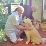 Must Love Dogs B&B & self contained cottage의 사진