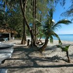Foto van Neverland Beach Resort