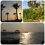 Pelican Bay Resort의 사진