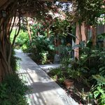 lush grounds leading to the rooms
