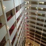 Foto de Atlanta Marriott Century Center/Emory Area