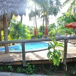 Φωτογραφία: Bosque del Cabo Rainforest Lodge