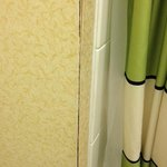 Fairfield Inn Asheville照片