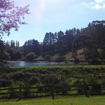 Foto de Adelaide Hills Country Cottages