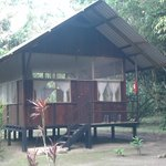 Φωτογραφία: Anaconda Lodge Ecuador Amazonia