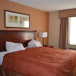 Country Inn & Suites NYC in Queens resmi