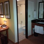 Hyatt Place Atlanta/Downtown resmi