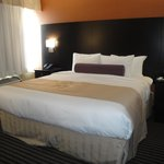 Bilde fra BEST WESTERN PLUS Toronto North York Hotel & Suites