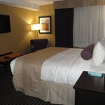 BEST WESTERN PLUS Toronto North York Hotel & Suites照片