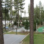 Ponderosa Falls RV Resort의 사진