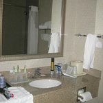 Foto van Holiday Inn Express Hotel & Suites White Haven - Lake Harmony