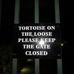 Tortoise sign - near the pool