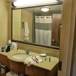 Hampton Inn & Suites Orlando International Drive North Foto