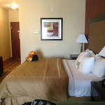 Photo de La Quinta Inn & Suites New Iberia