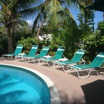 Beautiful tranquil clean pool - rustling palm trees provide shade!